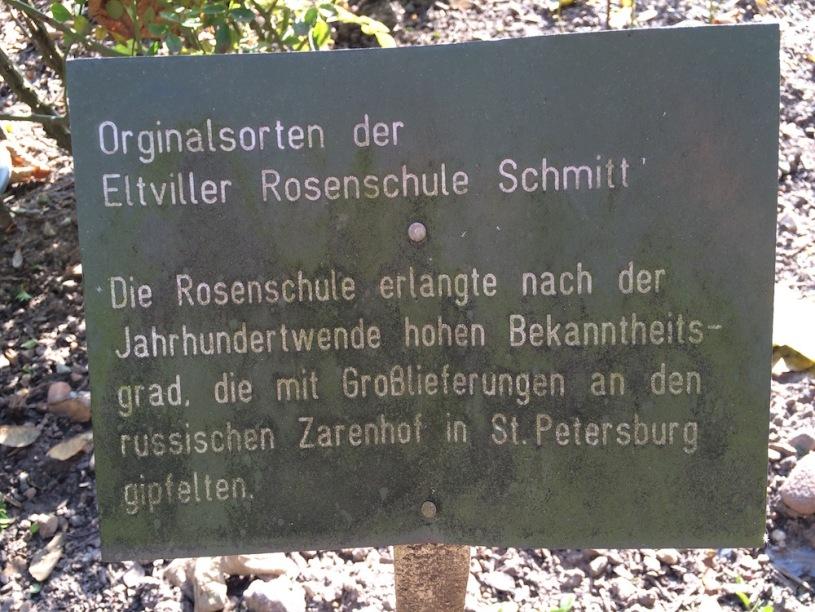 Rosenschule